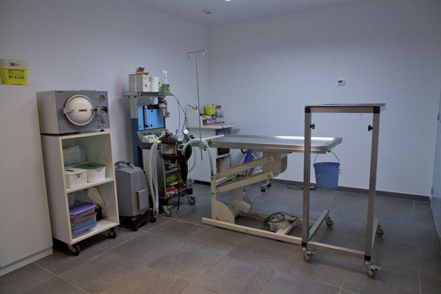 veterinaire dozule
