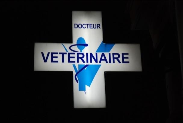 Croix vétérinaire