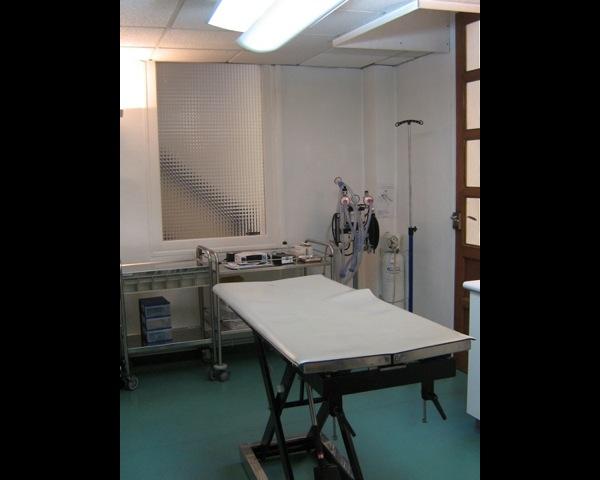 salle de chirurgie clinique vétérinaire dr Pachoud
