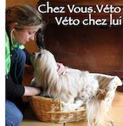 Vétérinaire à domicile Sens 89